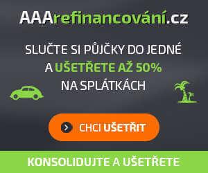 Online aukce půjček