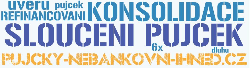 Bezúročná půjčka společníkovice